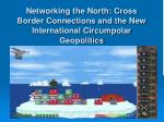Networking the North: Cross Border Connections and the New International Circumpolar Geopolitics