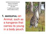 MARSUPIAL - an Animal, such as a kangaroo that carries its young in a body pouch.