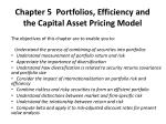 Chapter 5 Portfolios, Efficiency and the Capital Asset Pricing Model