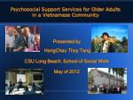 Psychosocial Support Services for Older Adults in a Vietnamese Community