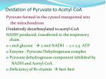 Oxidation of Pyruvate to Acetyl-CoA