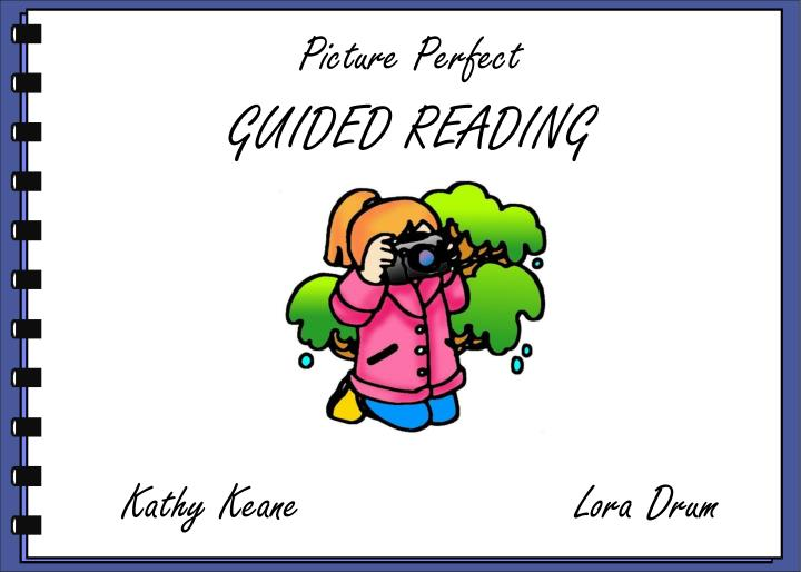 picture perfect guided reading n.