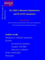 ILC BDS Collimation Optimisation and PLACET simulations Adina Toader