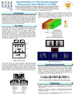 Implementation of a Biologically Inspired Stereoscopic Vision Model in C+CUDA