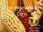The Wonders of Corn