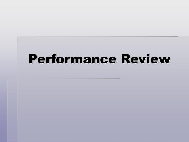 performance review n.