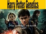 How are witches and wizards made?