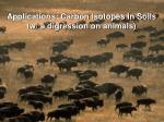 Applications: Carbon Isotopes in Soils (w/ a digression on animals)