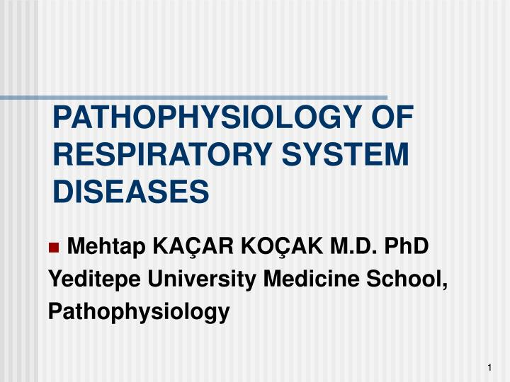 pathophysiology of respiratory system diseases n.
