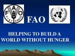FAO HELPING TO BUILD A  WORLD WITHOUT HUNGER
