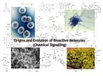 Origins and Evolution of Bioactive Molecules (Chemical  Signalling )