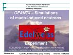 GEANT4  – Simulations  of muon-induced neutrons for the