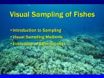 Visual Sampling of Fishes