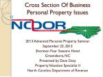 Cross Section Of Business Personal Property Issues