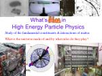 What's  Hot  in High Energy Particle Physics