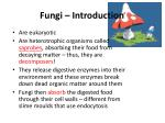Fungi – Introduction