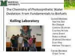 The Chemistry of Photosynthetic Water Oxidation: From Fundamentals to Biofuels