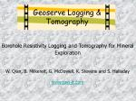 Borehole Resistivity Logging and Tomography for Mineral Exploration