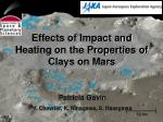 Effects of Impact and Heating on the Properties of Clays on Mars