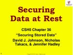 Securing Data at Rest