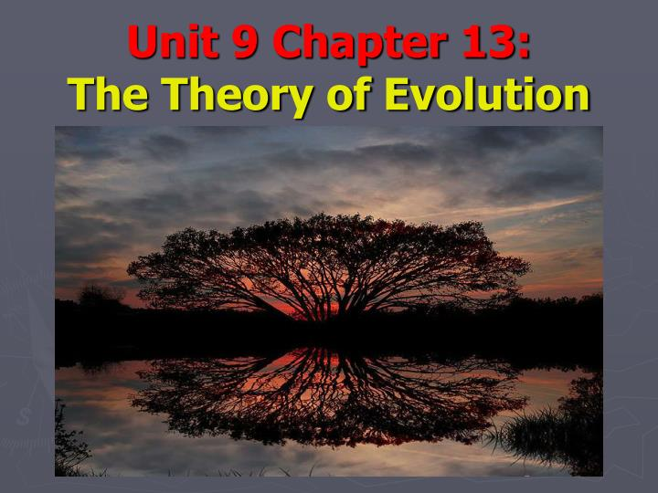 unit 9 chapter 13 the theory of evolution n.