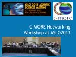 C-MORE Networking Workshop at ASLO2013