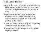 The Labor Process