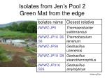 Isolates from Jen's Pool 2 Green Mat from the edge