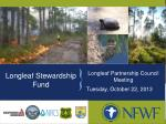 Longleaf Stewardship Fund