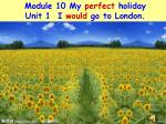 Module 10 My  perfect  holiday Unit 1  I  would  go to London.