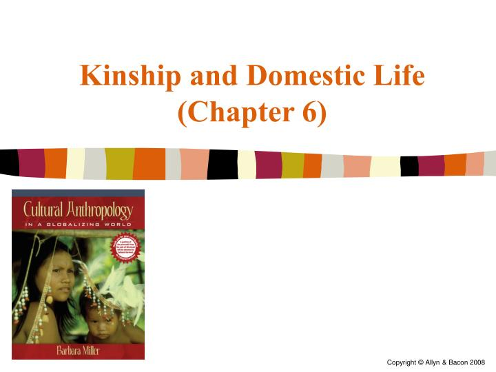 kinship and domestic life chapter 6 n.