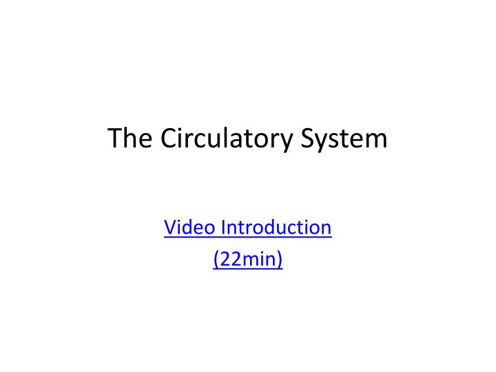 the circulatory system n.