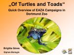 """Of Turtles and Toads"""