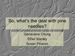 So, what's the deal with pine needles?