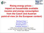 To analyze the impacts of recent energy price increases on households' available income