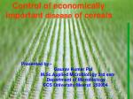 Control of economically important disease of cereals