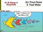 Ch 36 Energy in Ecosystems