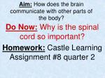 Aim: How does the brain communicate with other parts of the body?
