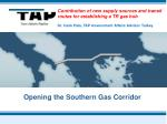 Contribution of new supply sources and transit routes for establishing a TR gas hub
