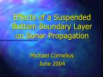 Effects of a Suspended Bottom Boundary Layer on Sonar Propagation