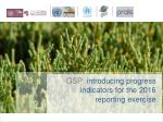 GSP: i ntroducing progress indicators for the 2016 reporting exercise