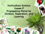Horticulture Science Lesson 17 Propagating Plants by Division, Separation, and Layering