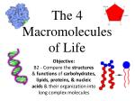 The 4 Macromolecules of Life