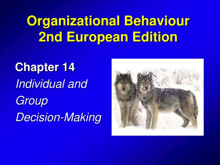 chapter 14 individual and group decision making n.