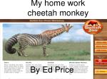 My home work cheetah monkey