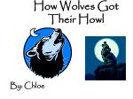 How Wolves Got Their Howl