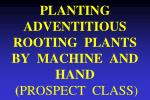 PLANTING ADVENTITIOUS ROOTING PLANTS BY MACHINE AND HAND ( PROSPECT CLASS)