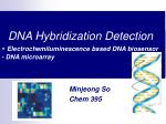 DNA Hybridization Detection -  Electrochemiluminescence based DNA biosensor - DNA microarray