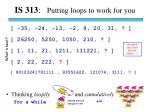 IS 313 : Putting loops to work for you