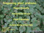 Diagnosing plant problems